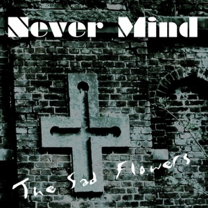 gallery/never mind